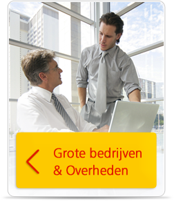 Grote bedrijven en overheden
